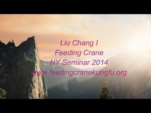 Feeding Crane Sticky Hands 2