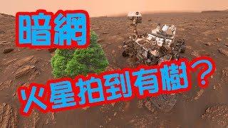 體驗《暗網》火星上面發現樹!?  Trees found on Mars thumbnail