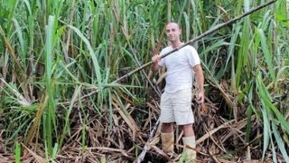 Homemade sugar cane juicer