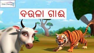 Video Odia Gapa Baula Gai | Odia Kahani | Odia Children Story | Odia Channel download MP3, 3GP, MP4, WEBM, AVI, FLV September 2018