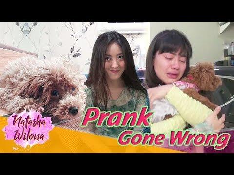 Prank Sahabat Sendiri Sampai Nangis! PRANK GONE WRONG!!!