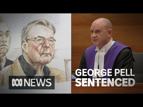 Cardinal George Pell's sentencing in full | ABC News