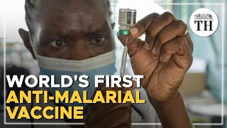 Will India benefit from the malaria vaccine?