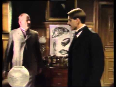 The Invisible Man, Episode 6, Final 1984