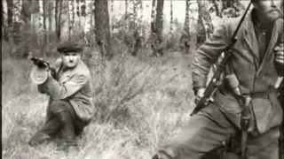 Leonard Cohen et Noir Desir.- The Partisan