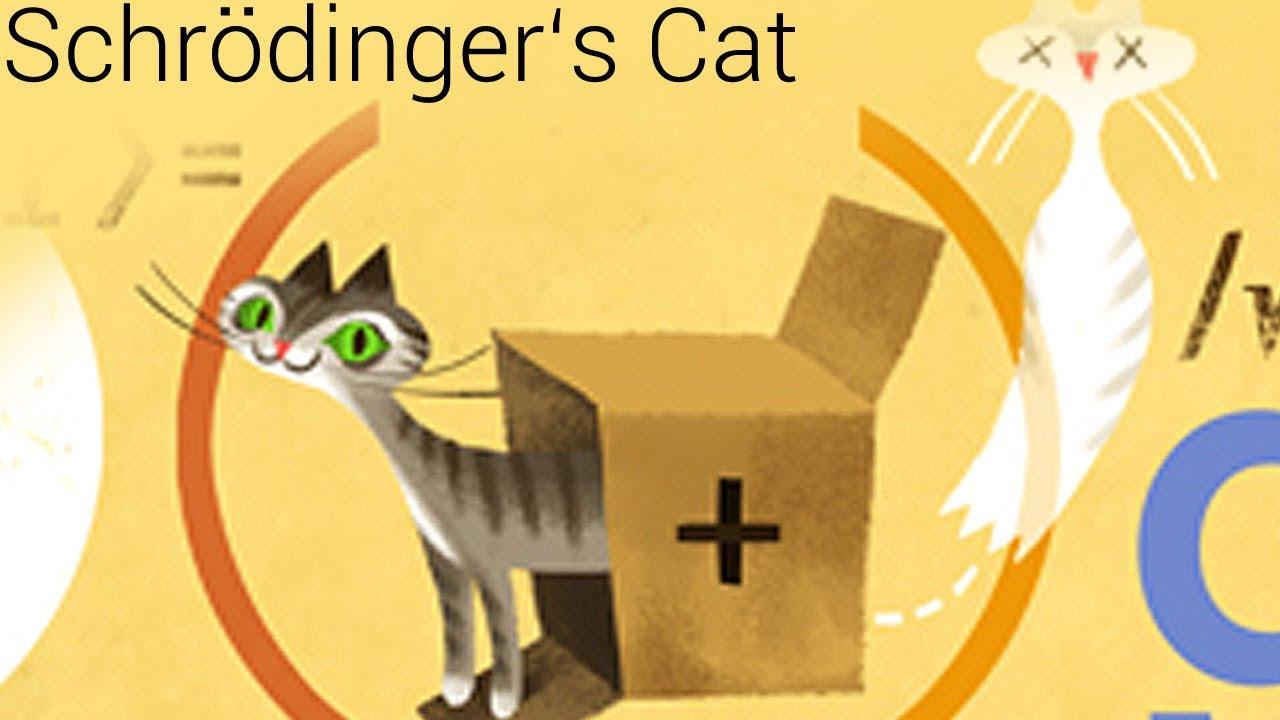 Erwin Schrödinger Cat Content Paradox (Google doodle) - YouTube