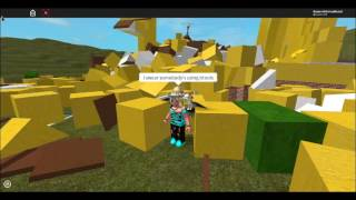 (REUPLOAD) PEOPLE WE'RE ACCUSING ME FOR HACKING ON ROBLOX'S GAME