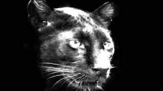 Anna Coogan And North 19  Fade Away (audio) Panther Song I =^.^=