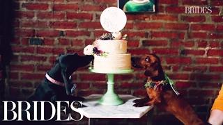 This Wiener Dog Wedding Is the Cutest   BRIDES