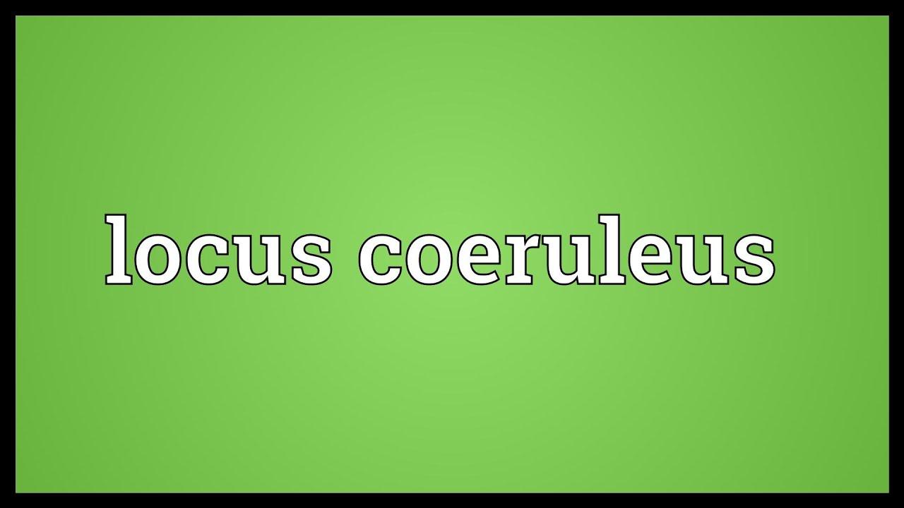 Locus coeruleus Meaning - YouTube