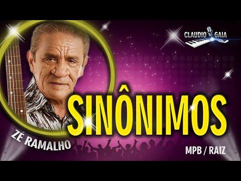 SINÔNIMOS =  ZÉ RAMALHO - KARAOKÊ