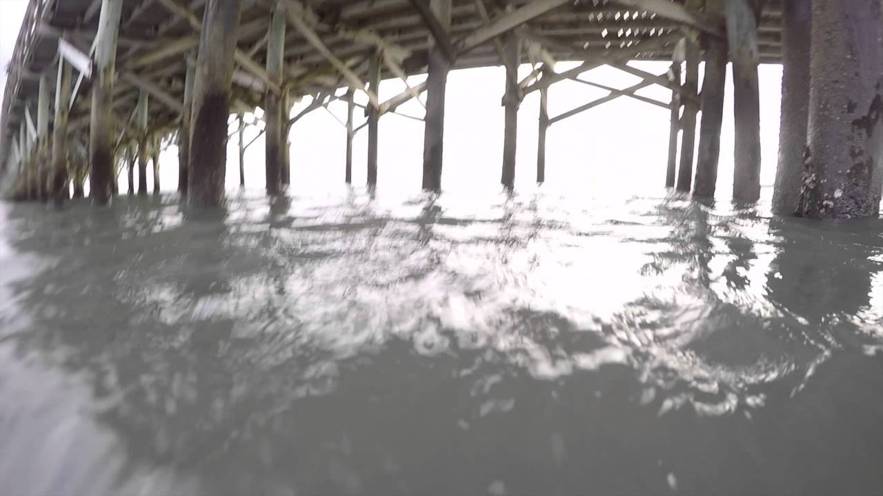 Myrtle Beach Spinner Shark Attack