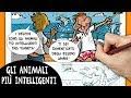 Come disegnare: gli animali più intelligenti - Fare selfie - Vignette disegnate bastardidentro