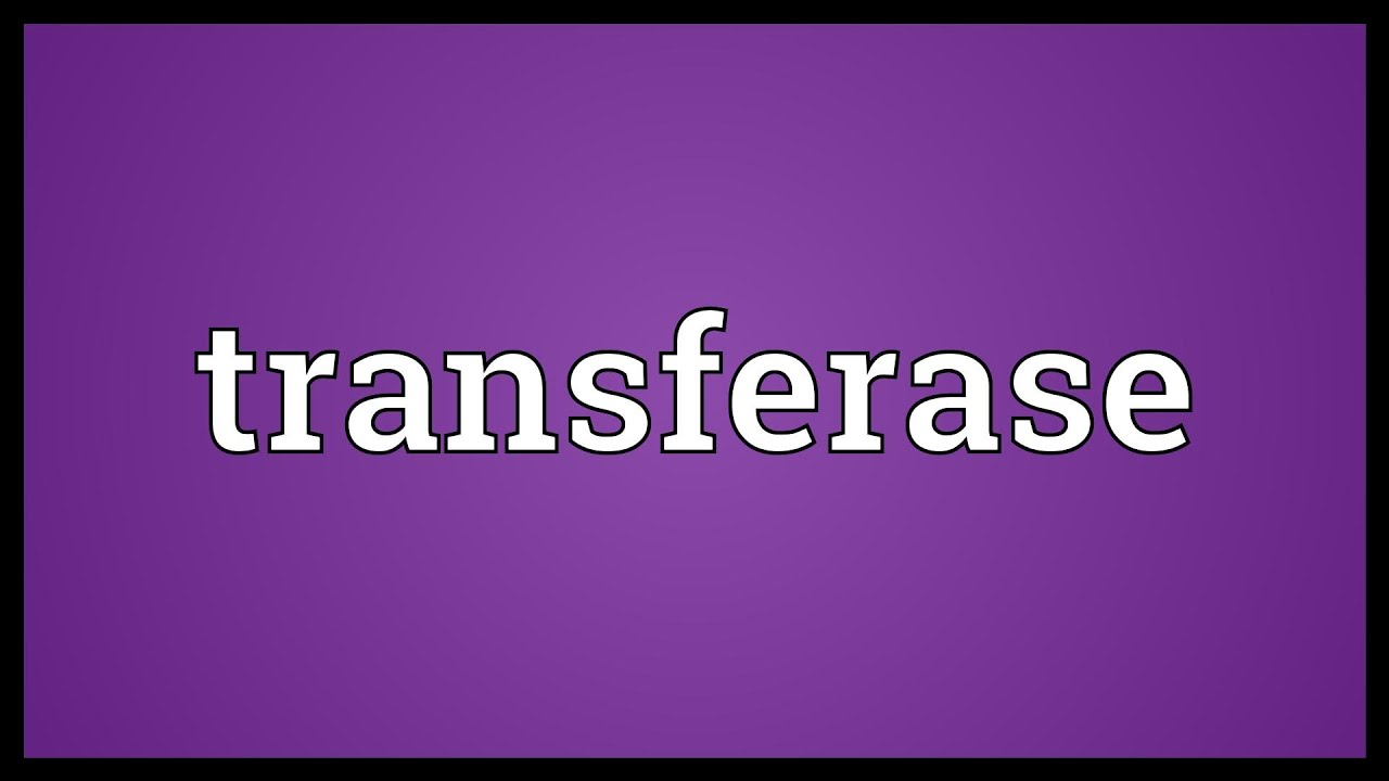 Transferaasi