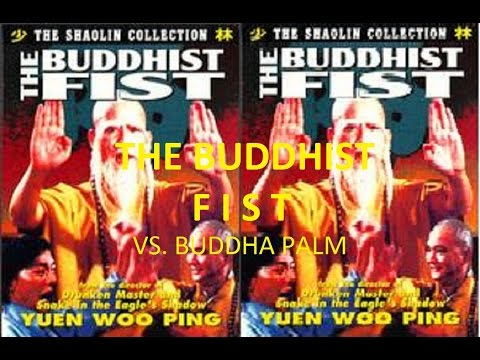 Download Kung Fu Lovers | Buddhist Fist VS. Buddha Palm (Amazing Fight Sequences)