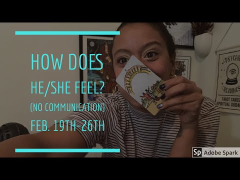 How Does He/She Feel About You ✨ WEEKLY - NO COMMUNICATION - Love TAROT💖 February 19th-26th 2018