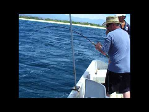 Catdaddy's Rooster Fish