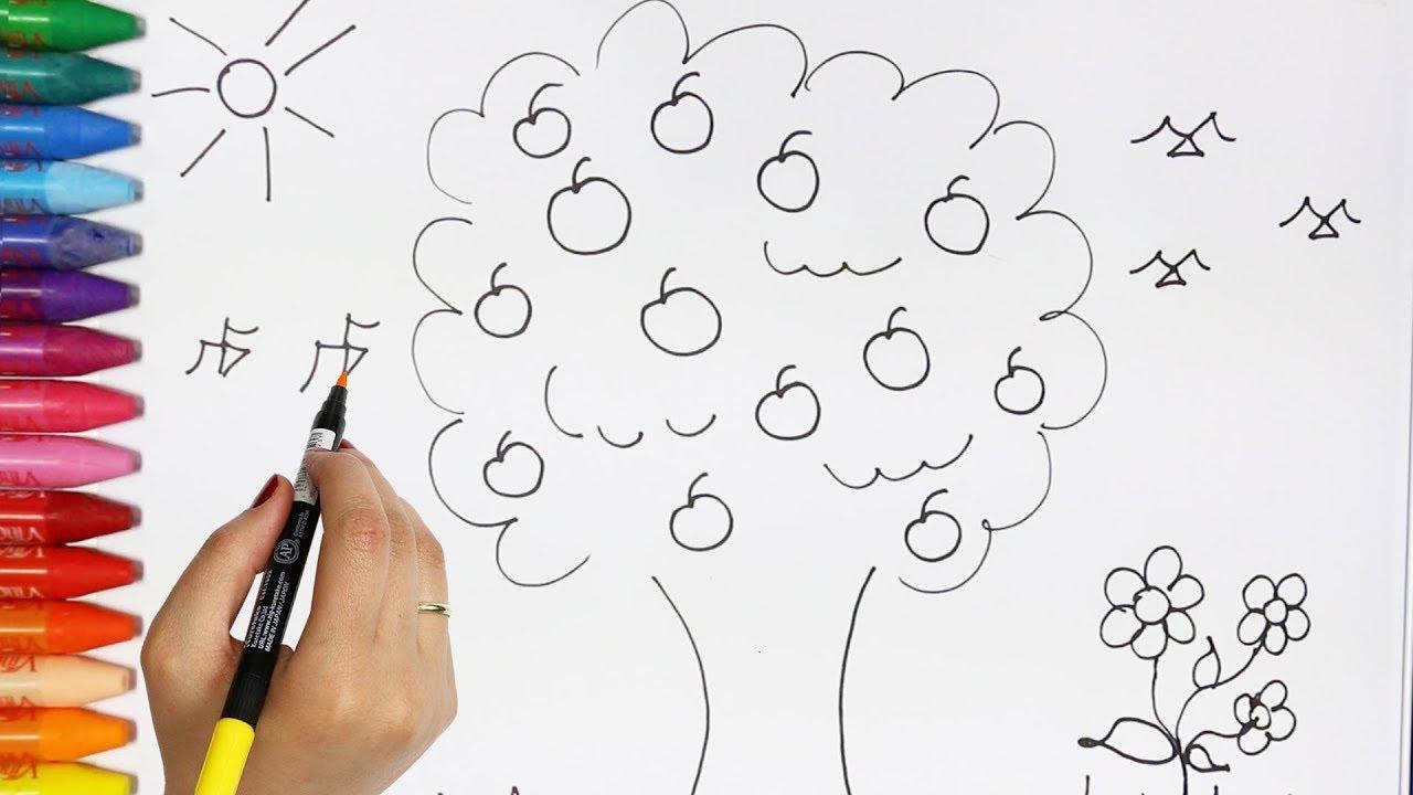 Cara menggambar pohon Cara Menggambar dan Mewarnai TV Anak