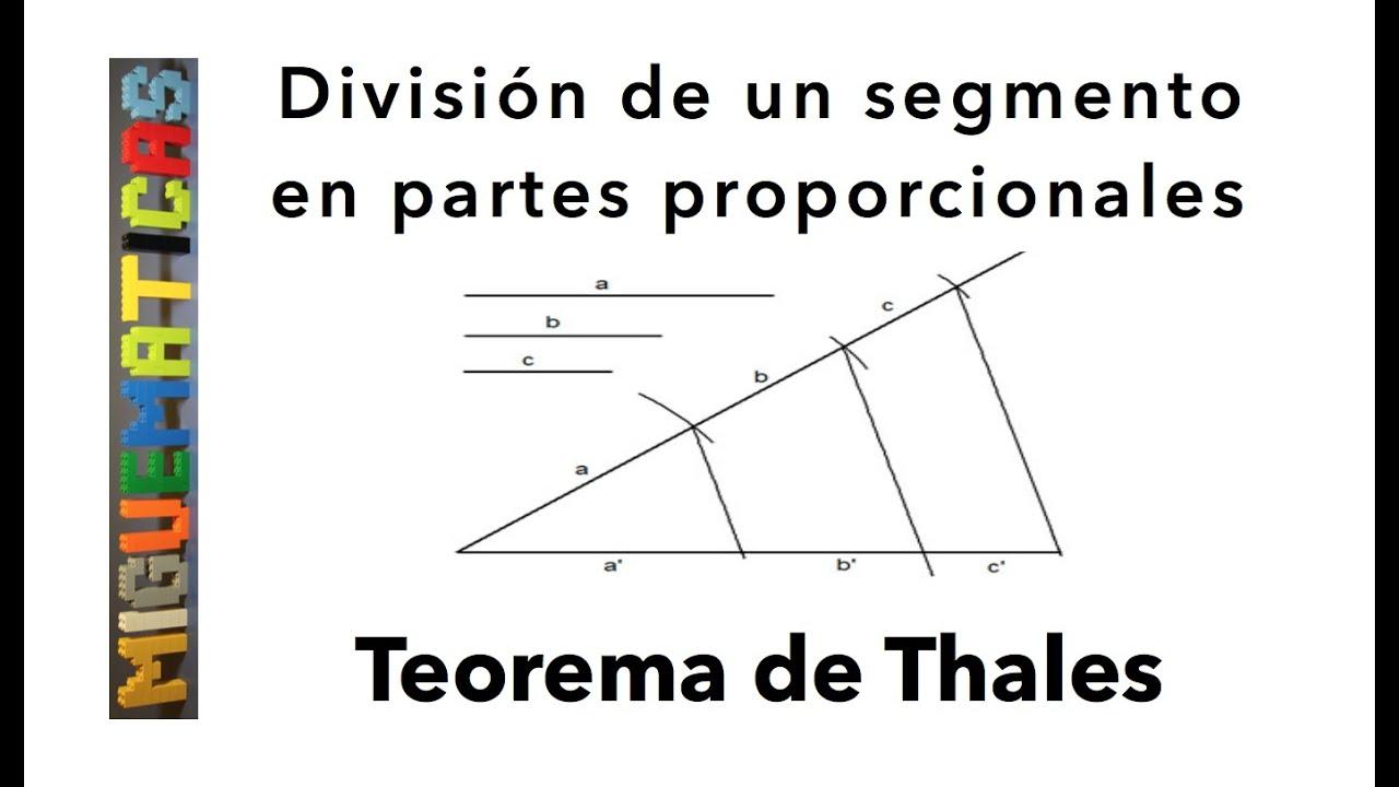 Teorema de thales divisi n de un segmento en partes for Partes de un vivero forestal