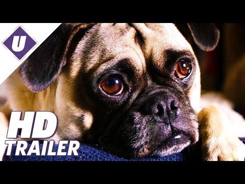 Dog Days - Official Teaser Trailer (2018)