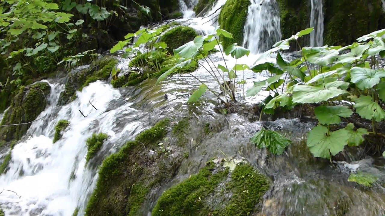 9761 las rocas el musgo y las plantas de una peque a for Cascadas con piedras naturales