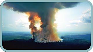 Der Amazonas brennt! Warum das vielen egal ist | #mirkosmeinung