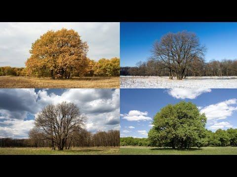 Astronomical & Meteorological Season Changes
