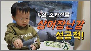 4살조카선물 상어장난감 성공적! 컬렉타 해양동물 피규어…