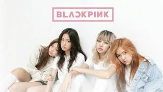 PLAYING WITH FIRFBY BLACKPINK K-POP SONG