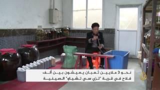 الأفاعي مصدر دخل جيد في الريف الصيني