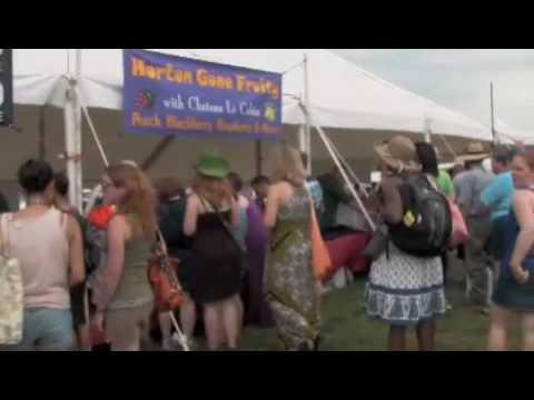 The True Review - Vintage Virginia Wine Festival