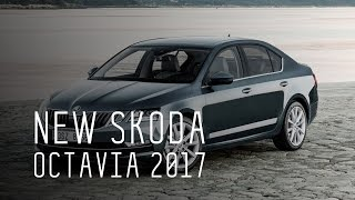 NEW SKODA OCTAVIA 2017 - БОЛЬШОЙ ТЕСТ ДРАЙВ