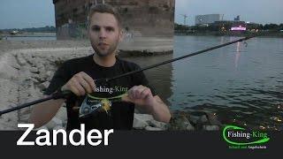 Zander-Angeln Teil 1: Was brauche ich? | Fishing-King.de