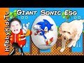 We Open a Giant SONIC Surprise Egg while HobbyDog Races Toys with HobbyKids
