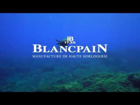 Blancpain x The Economist Group: Ocean Case Study