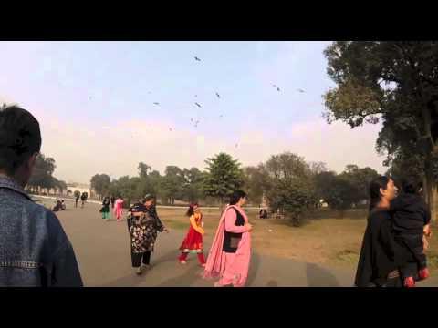 Shalimar Garden Vlog