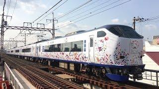 """「ハローキティ はるか」 阪和線 美章園駅通過 """"Hello Kitty Haruka"""" JR Hanwa Line Bishōen Station (2019.3)"""