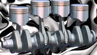Shell Rimula R4X - Clip mua tuong tac