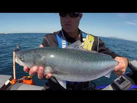 Jetski Fishing Show S2 Ep2 BIG Fish At The Mokohinau Islands