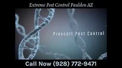 Extreme Pest Control Paulden AZ