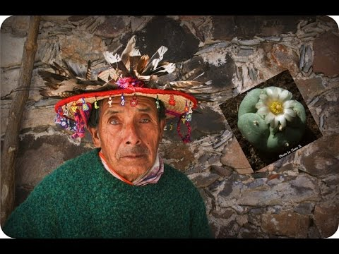 Peyote: Last of The Medicine Men - Huichol People of Mexico