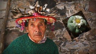 Peyote: Last of The Medicine Men - Huichol People of Mexico
