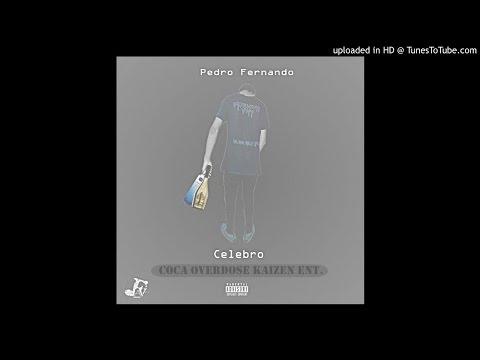 Pedro Fernando - Celebro (Áudio Oficial)