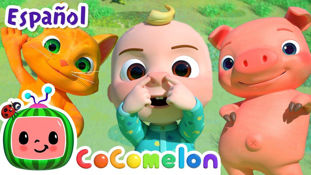 CoComelon en Español   El baile animal   Canciones Infantiles y de Cuna