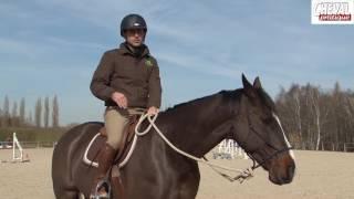 303 controler son cheval
