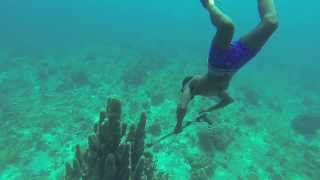 A professional spearfisherman at work in Negril, Jamaica