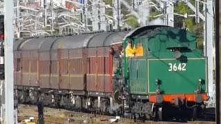 Australian Trains: Historic Steam & Diesel Locomotives at Sydney's Central Station