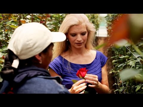 Royal Flowers Farm Tour with Brooke Raulerson