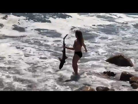 شاهد: فتاة تمسك بقرش من ذيله وشاب يسقط بين مفاصل جسر!  - نشر قبل 2 ساعة