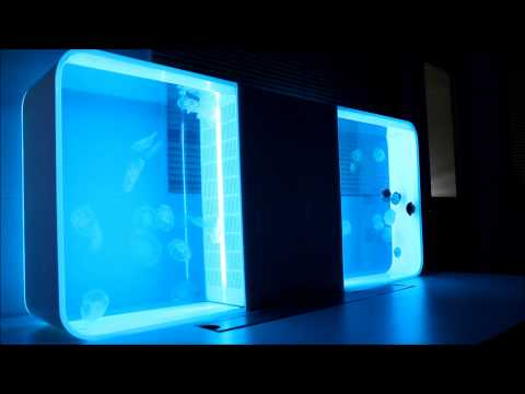 Two Cubic Jellyfish Aquariums Back To Back